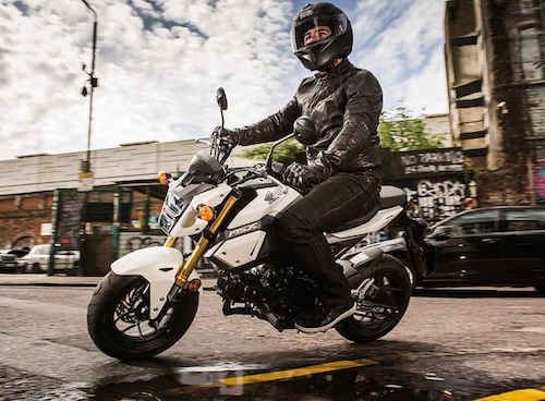 The Honda MSX 125 | Bike Review
